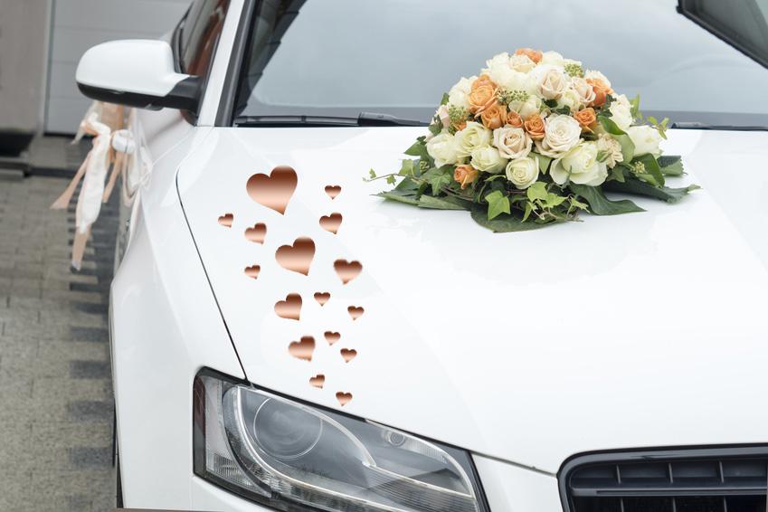 Aufkleber Hochzeit Auto Herzen  V.2 31Stk.